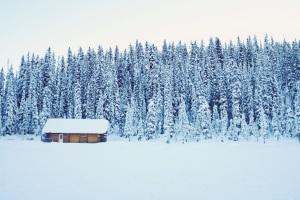 cabin-1209724