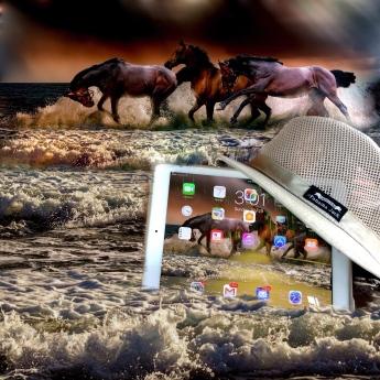 iPad and Horses